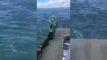 Watch an SUV roll off a ferry into water