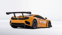 2013 McLaren MP4-12C GT3 17.1.2013