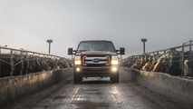 2015 Ford King Ranch Lineup