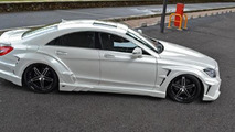 Vitt Performance Mercedes CLS 29.5.2012