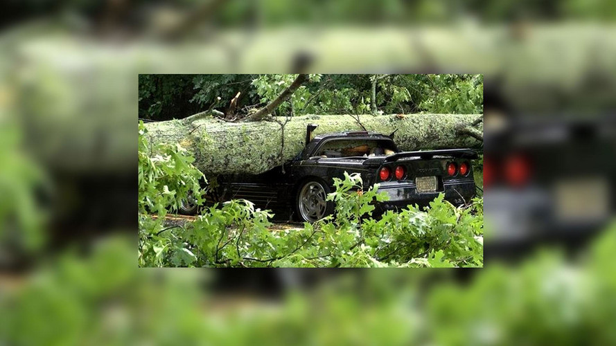 Corvette Crushed By Massive Tree In Storm, Driver Walks Away