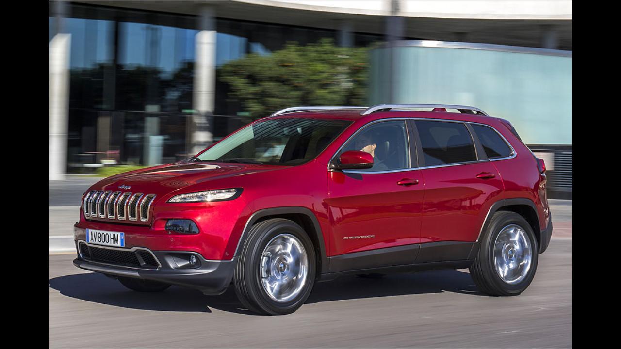 Flop: Jeep Cherokee, Baujahr 2014, 138 Standtage