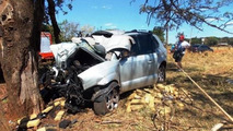 Mortal irony: trafficker killed by half a ton of drugs after colliding with a tree [video]
