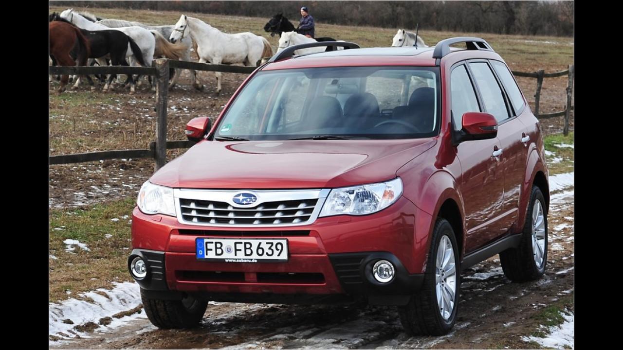 SUVs, 3. Platz: Subaru Forester