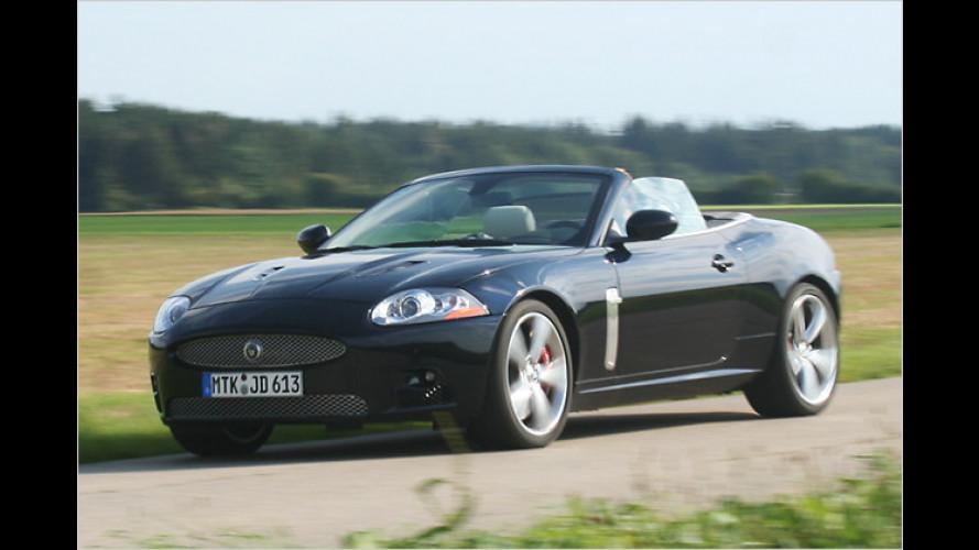 Versammlung von Werten: Jaguar XKR Cabrio Portfolio