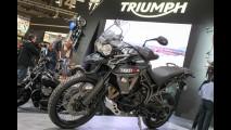 Salão de Milão: Triumph apresenta novas versões da Tiger 800