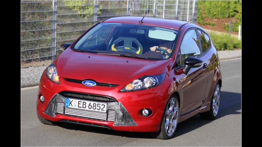 Erwischt: Ford testet den Super-Fiesta