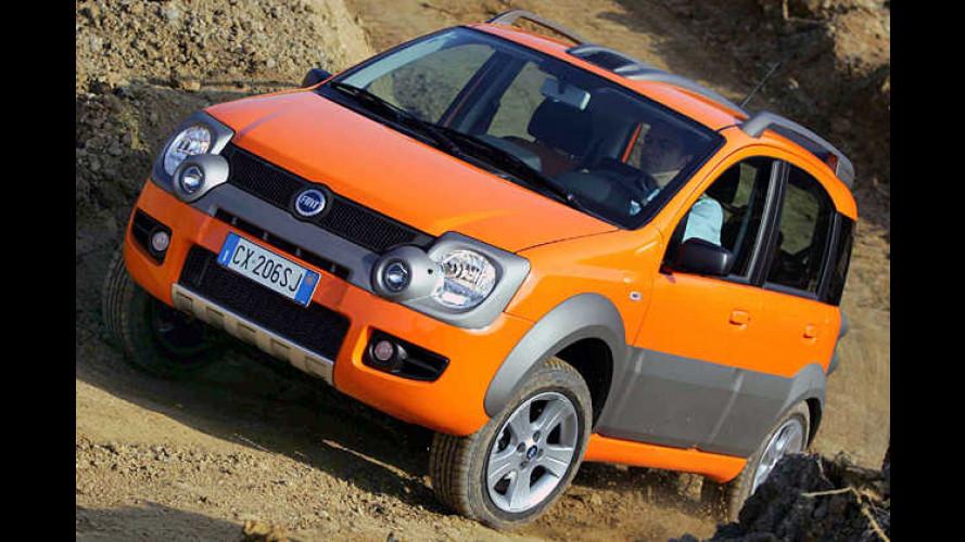 Kleines Geländetier: Fiat Panda Cross mit eigener Optik