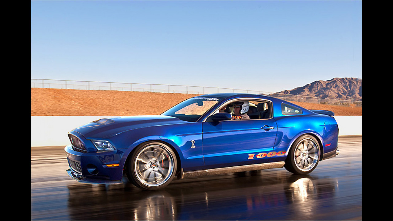 Shelby 1.000