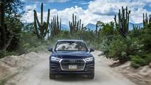 Audi Q5 TDI 150 CV 2017