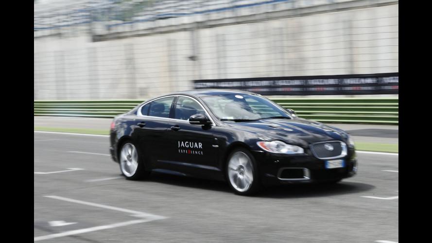 Jaguar Experience 2011