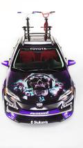 Toyota Crusher Corolla 31.10.2013