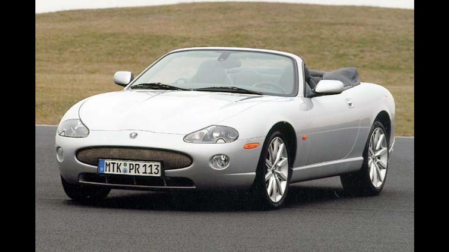 Jaguar XK aufpoliert: Schlankem Kater die Nase geliftet