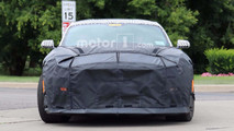 2019 Mustang Shelby GT350 spy photo