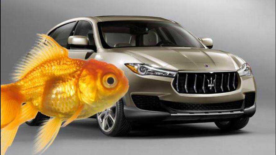 Maserati Kubang, il nostro Pesce d'Aprile