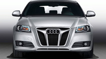 AK Car-Design Audi A3 grille insert