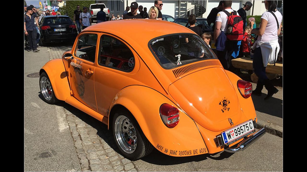 Orange ist sehr beliebt, wie man auch an diesem Käfer unschwer erkennt