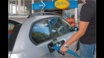 Durchblick durch den Tankstellendschungel