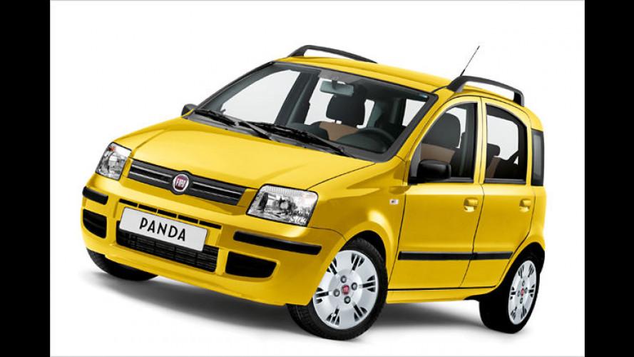 Glücklicher Panda: Fiat bringt das Sondermodell ,Happy