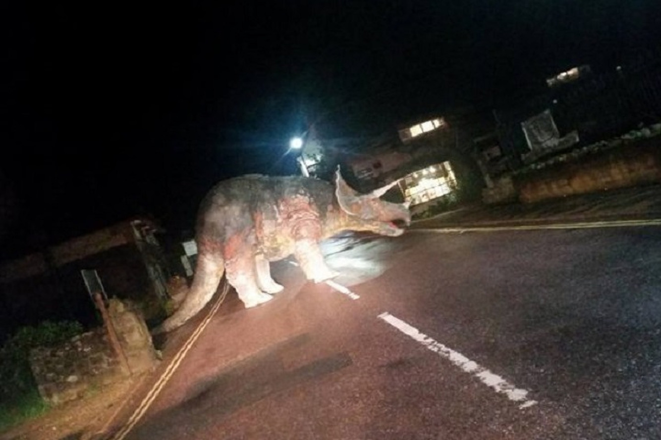 Yes, That's a Huge Triceratops in the Middle of the Road