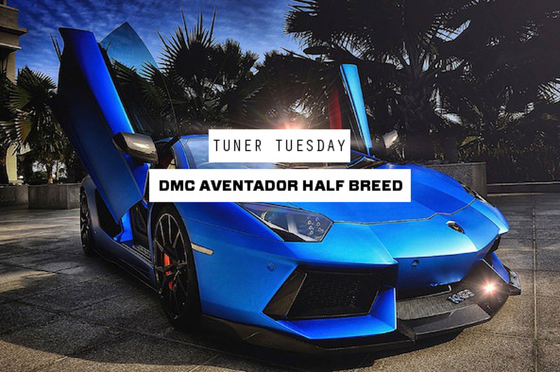 DMC Lamborghini Aventador Half Breed: Part Supercar, Part Beast